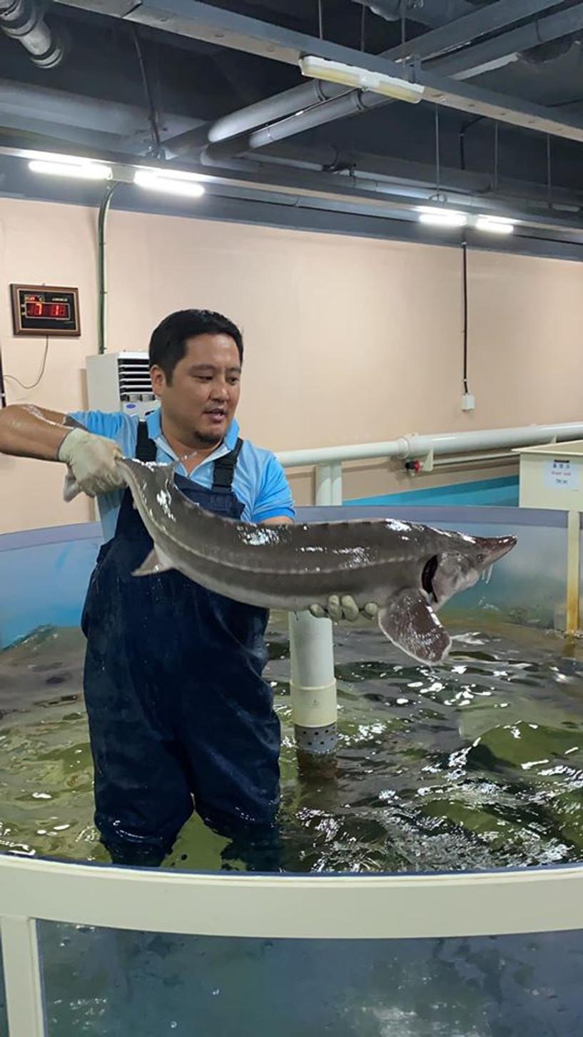Олимпийн аварга Э.Бадар-Ууган БНСУ-д загасны аж ахуйд ажиллаж байна