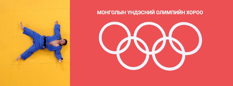 МҮОХ-ны Ерөнхийлөгчид олимпын аварга Н.Түвшинбаяр ганцаараа нэр дэвшжээ