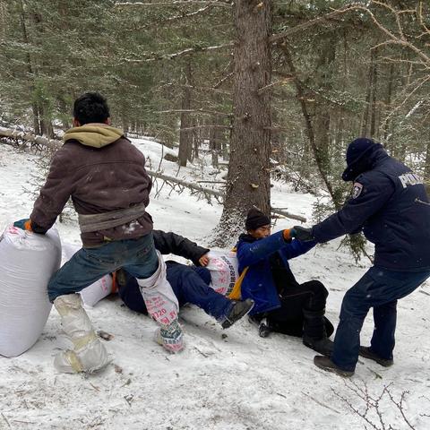 20 гаруй отог, 260 гаруй иргэдийн хууль бус үйлдлийг таслан зогсоож, уулнаас буулгажээ