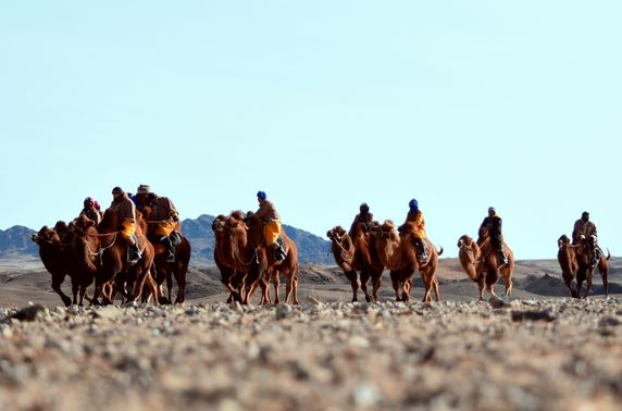 """""""Gobi challenge-2020"""" олон өдрийн тэмээн аялал үзэгчдийн хүртээл болно"""